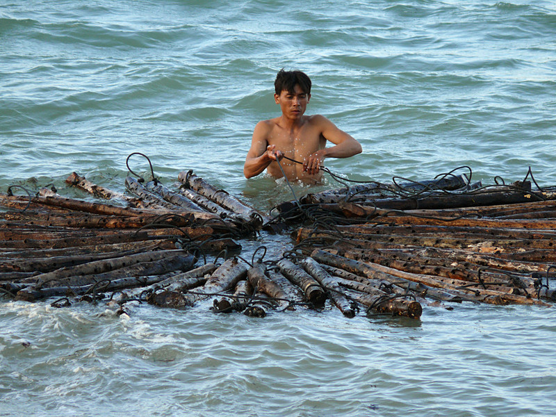 Lobster farmer, Nha Trang - This farmer is setting up the floating logs that will provide incubators for young lobsters.