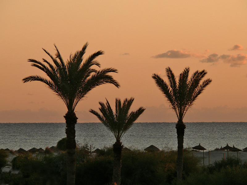 Dawn on the Med, Jerba