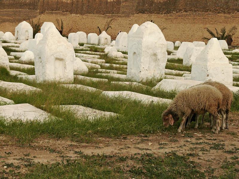 Cemetery, Kairouan
