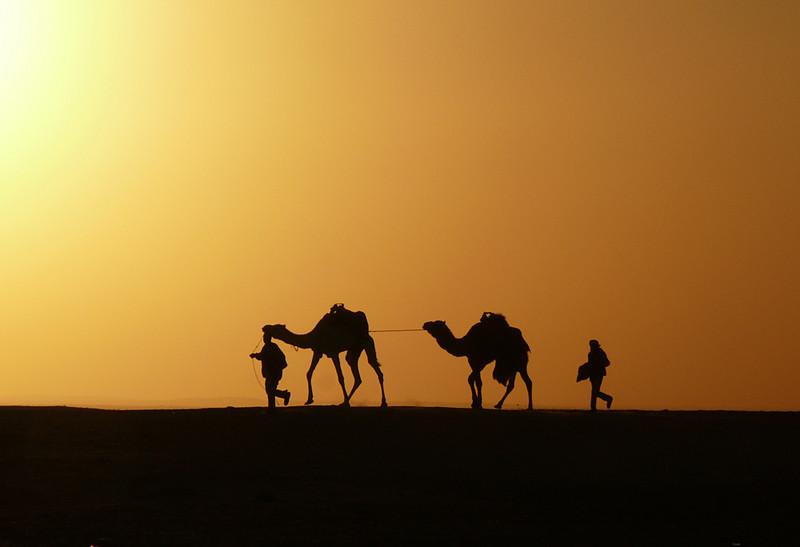 Last camel ride, Douze
