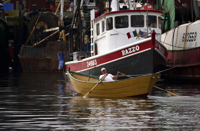 Fisherman, Gloucester
