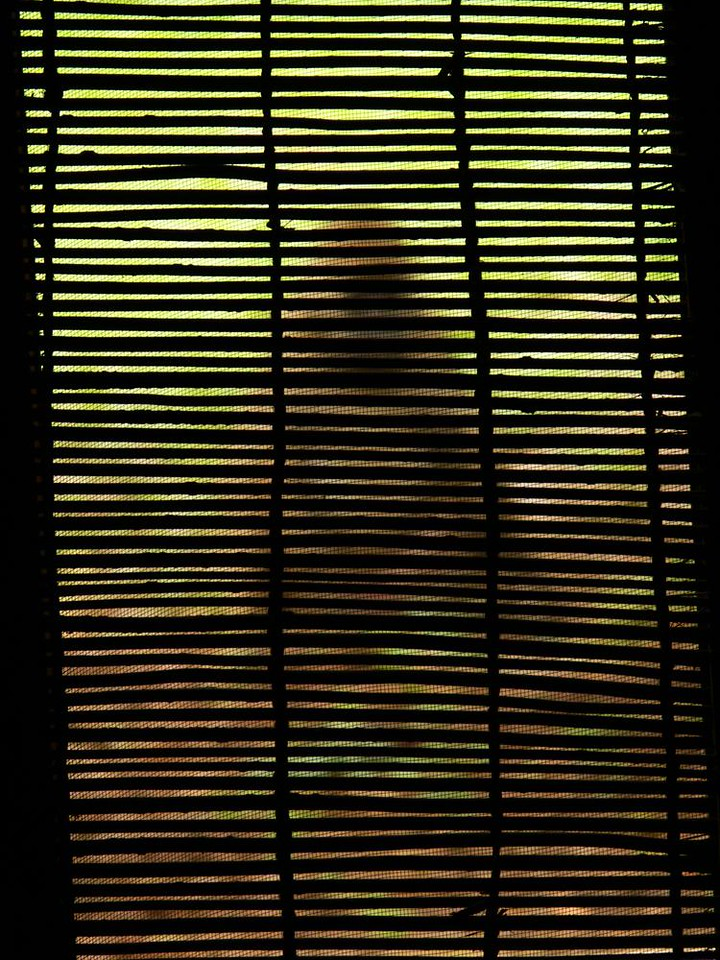 Baboon Curtain - An abstracted view of a frequent visitor to our rooms at Luangwa River Lodge.