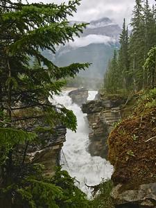 Athabasca Falls (Aug 4)