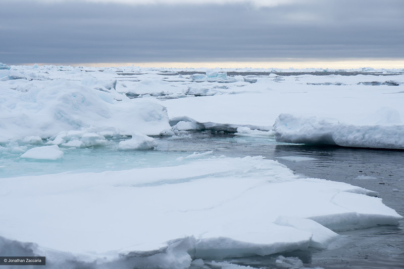 Arctic ocean, sea ice