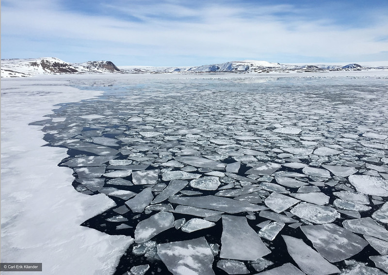 Svalbard, sea ice in Murchinsonfjorden