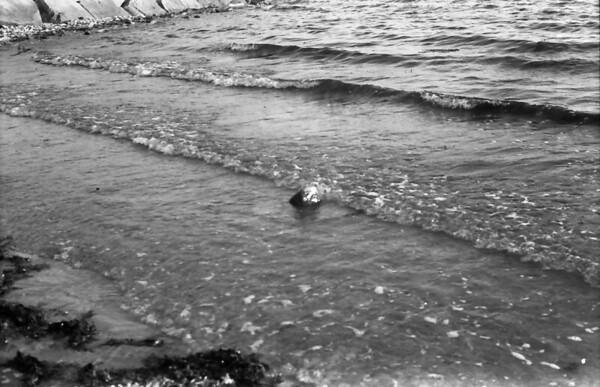 34 7-16-06 Galway Beach