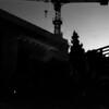 0 Venice dark