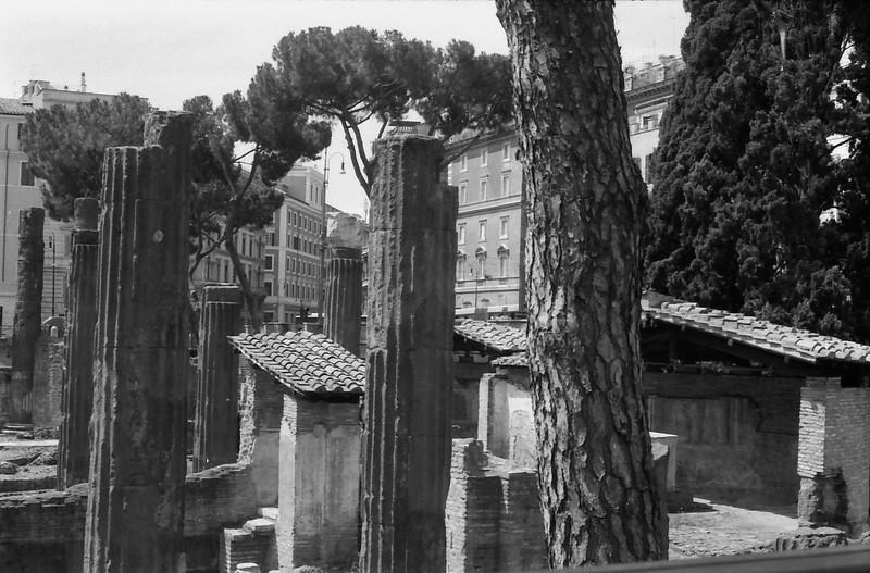 26 Rome ruins