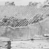 12 Pompeii