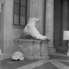 4 Rome Campidoglio Constantine