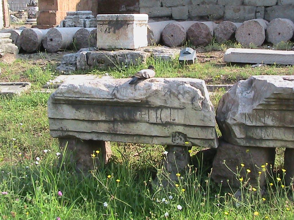 817 Forum