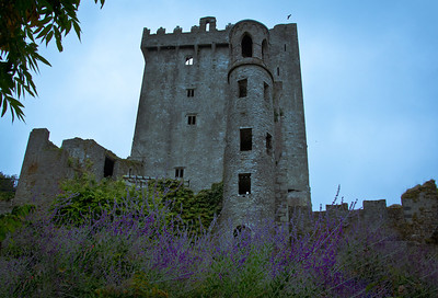 Blarney Castle with lavender