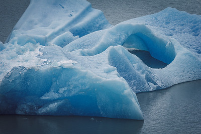 Iceberg on Lago Grey