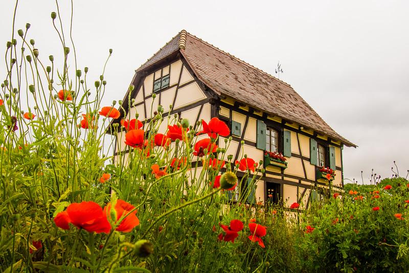 Castroville, Little Alsace Lorraine