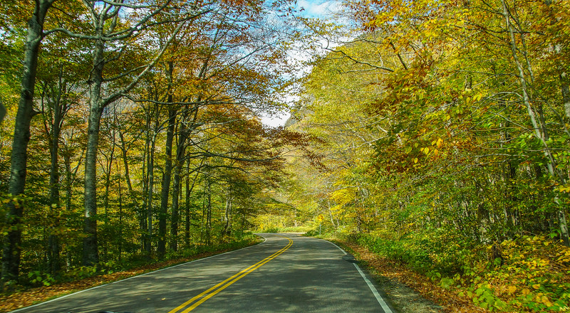 On route 7 in Vermont