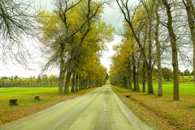 The Road to the sustainable farm in Shelbourne