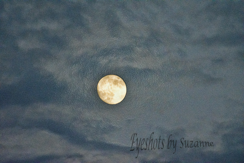 Super Moon, the night before