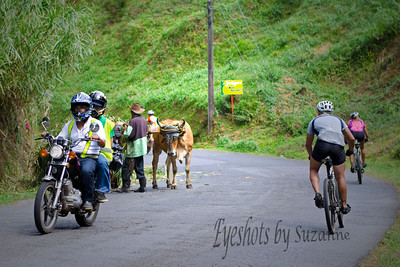 The most common modes of transportation - on the road to LaPaz Waterfall Gardens, Costa Rica