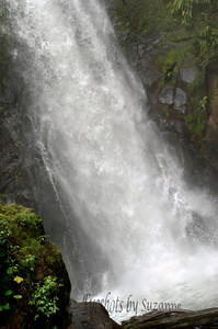 Templo Waterfall, the first falls in our hike.  I have seen many waterfalls in Oregon, Hawaii & Colorado, but was so surprised at the amount of water and the speed of this falls in Costa Rica.  This falls is 85 ft - mist was everywhere - hard to capture the beautiful!