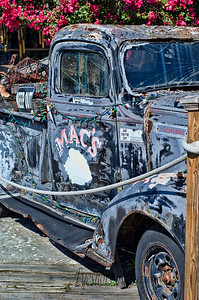 Mac's Sea Garden -  the epitome of Key West.  Laid-back, open-air and full of trinkets to take back home, such as a sponge or maybe a conch shell .  Oh, and don't forget to take your picture in front of Mac's antique truck!