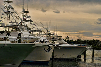 The Deep Sea Fishing Boats Founders Park and Marina, Islamorada, Florida
