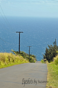The road to nowhere.  Did a turn-around on the Hilo side of the Big Island, Hawaii and loved the way this road drifted into the ocean...not really.