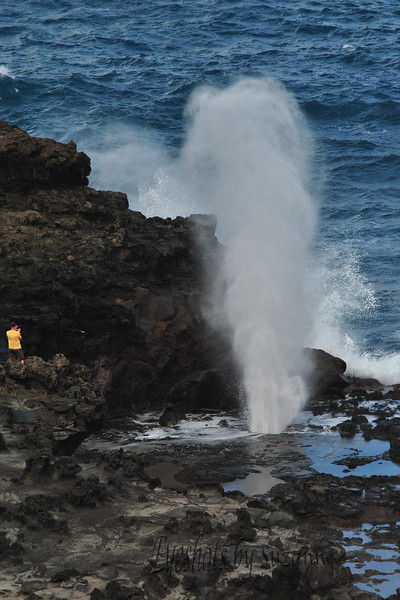 Nakalele Blow Hole - Located at the most northern point Maui, HI.  The surf was high and the geyser effects were amazing!   Beware of getting to close - you can get sucked back into the hole by the retreating water.