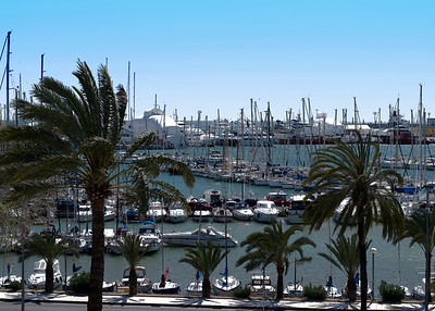 The beautiful Port of Palma
