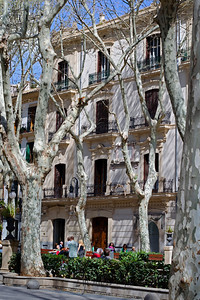 Walking along the beautiful tree-lined plaza of the Passeig des Born.  Fantastic architecture and a great people-watching location! Tous Jewelry, which originated in Barcelona, has a beautiful store here along with Mallorca Pearls, &  other high-end shops!