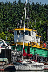 Star Marine Tugboat, Glen Cove, Bainbridge Island, WA I loved the colors of this tugboat and found it is a real working tugboat, belonging to Star Marine.  There was quite a variety of boats in this lovely Cove.