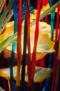 Another one of my favorite Chihulys. Chihuly Garden and Glass, Seattle, WA