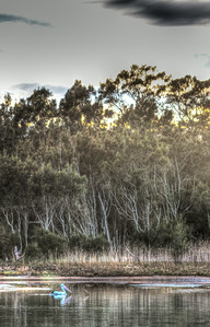 Wamberal_2014-06-20_08-45-03_IMG_5650_©wise2014_HDR