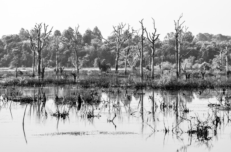 Komplex Angkor Wat