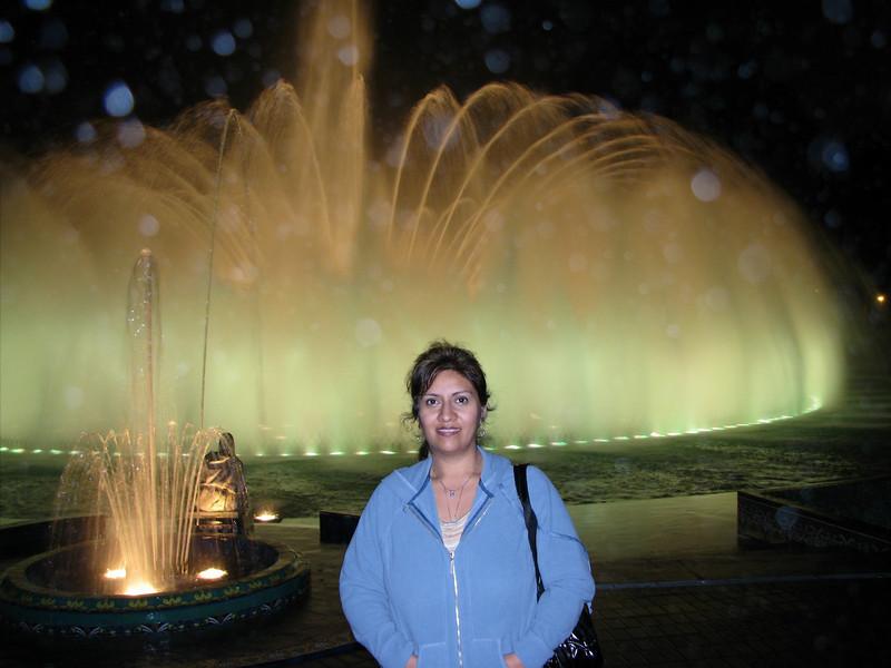 At the festival of water and lights.<br /> En el festival de aguas y luces.