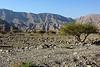 Attempted Wadi Al Baih - Found Wadi Sidr