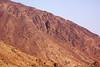 Wadi Mai
