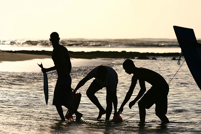 Fishermen, Praia do Forte, Brazil.