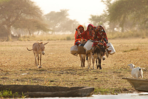 Choa nomads, Maga, Extreme-North, Cameroon.