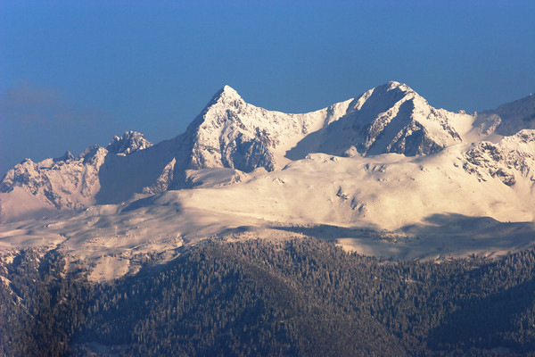 Mont Blanc taken from La Chartreuse, Alpes, France.
