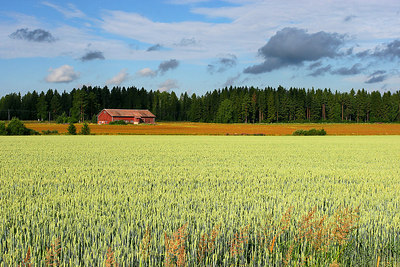 Countryside near Helsinki, Finland.