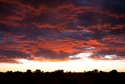 Sunset in the Kalahari desert, close to Mariental, Namibia.