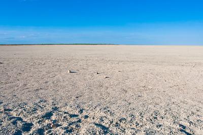 White Pan, Etosha National park, Namibia.