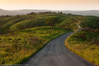 Hluhluwe reserve, Kuazulu Natal Province, South Africa.