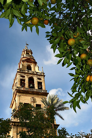 Mezquita de Cordoba, Andalusia, Spain.