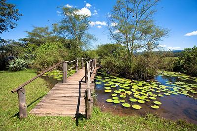 Mlilwane NP, Swaziland.