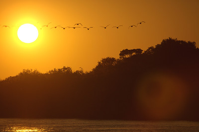 Sunset on the Zambezi river, Livingston, Zambia.