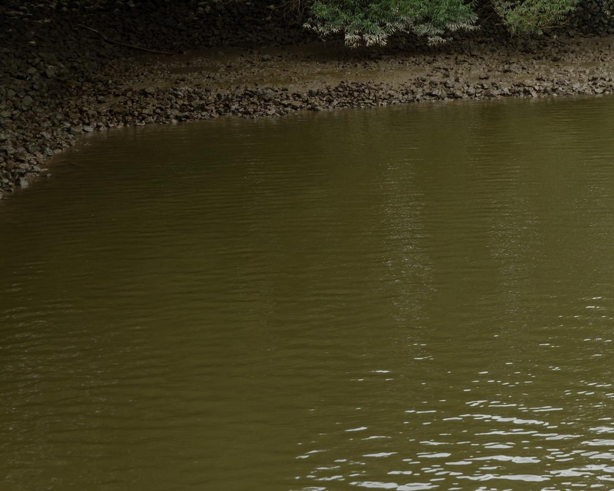 hamburg_2014-08-12_0147