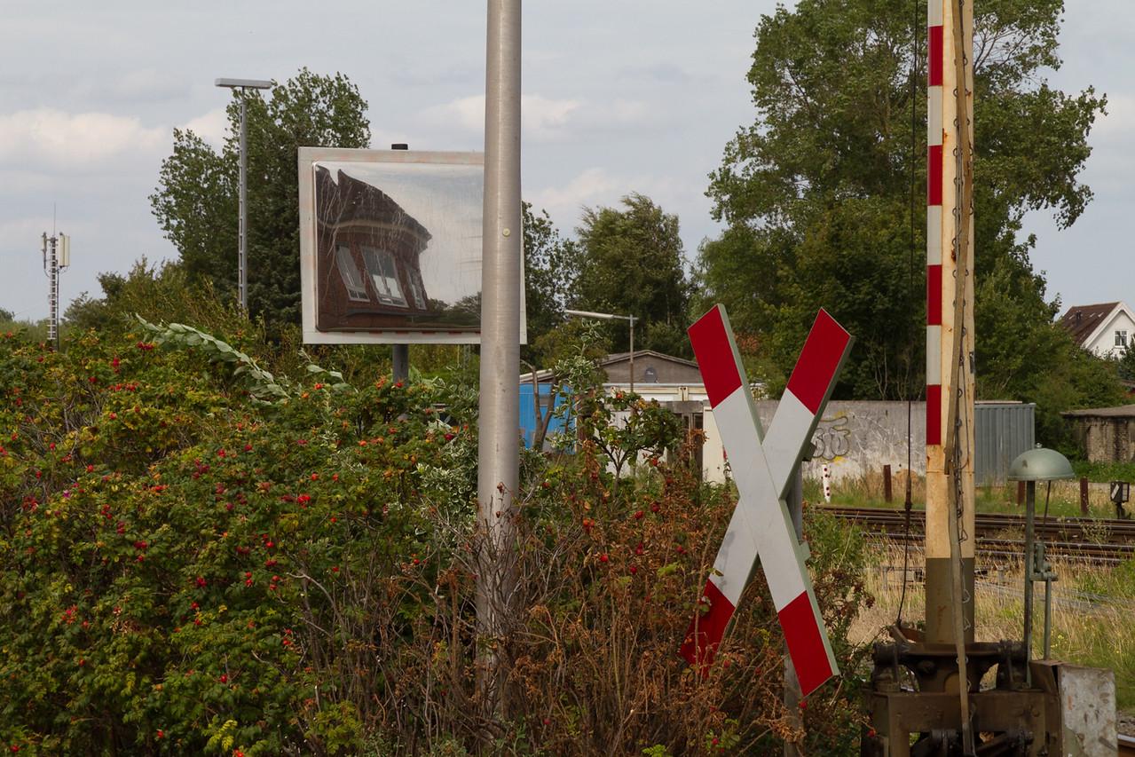 niebull_2014-08-10_0027
