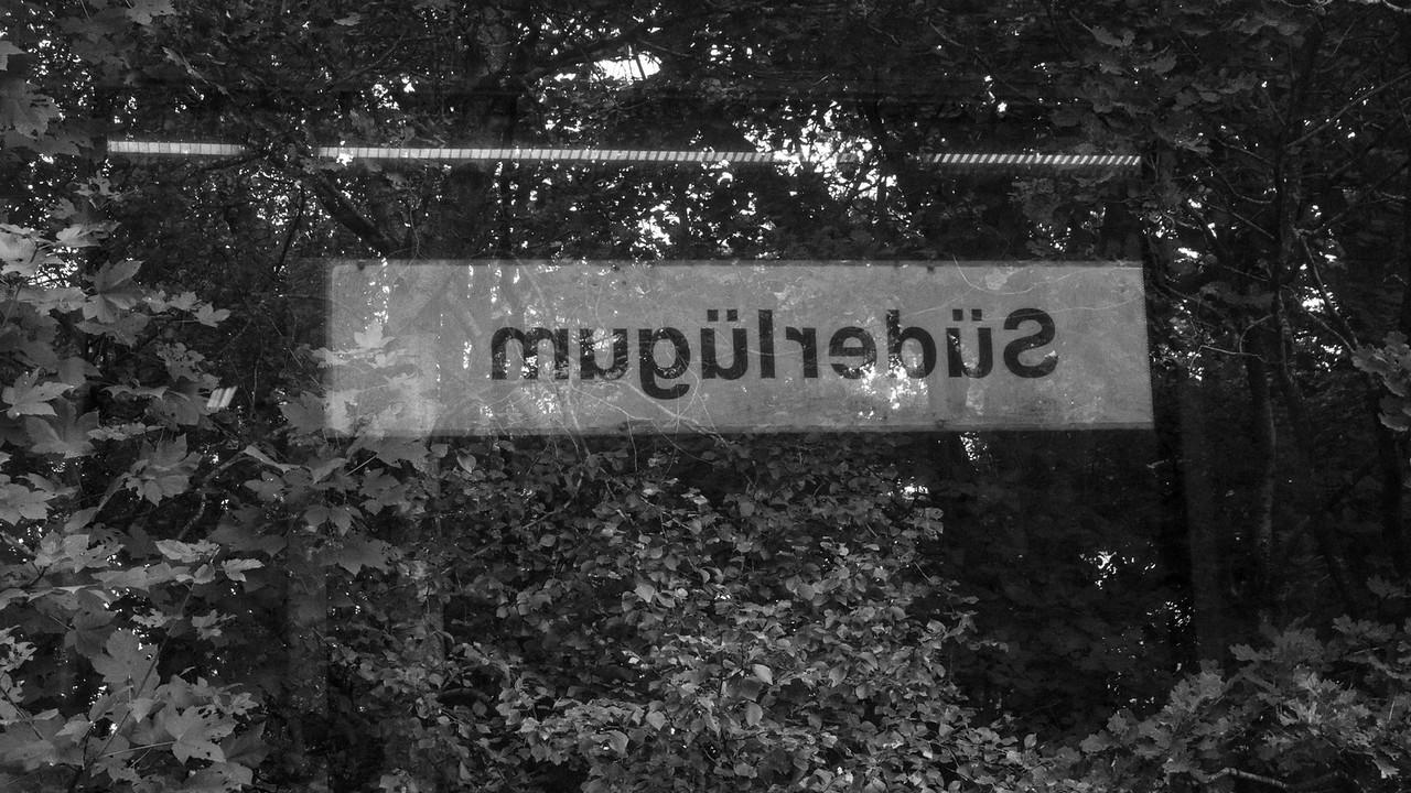 niebull_2014-08-10_0002