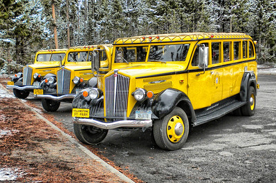 """""Tour Time""  While we did not ride the yellow tour buses, I thought it was a kind of a fun way to kick off this Yellowstone/Grand Tetons National Park tour series. And, yes there was a beautiful snow fall in Yellowstone the week we were there."